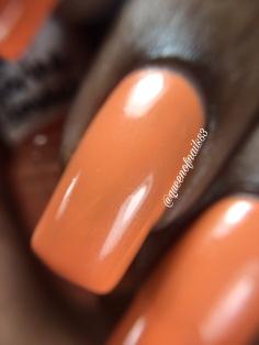 Tangerine Dreamsicle macro