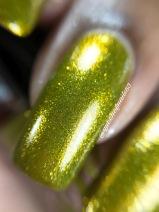 Gilded Olive macro
