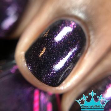 Chirality - Shug's Purple - macro