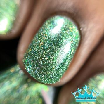 Prickly Pear - macro