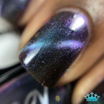 Galaxies Out the Sass - macro