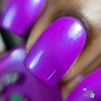 Purple People Eater - macro