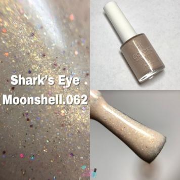 Shark's Eye Moonshell.062
