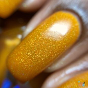 Orange You Glad It's Fall - macro