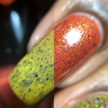 Phasmatos Motus Incendiarios - macro