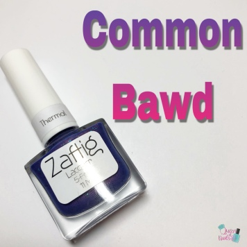 Common Bawd (T)