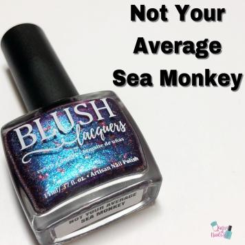 Not Your Average Sea Monkey