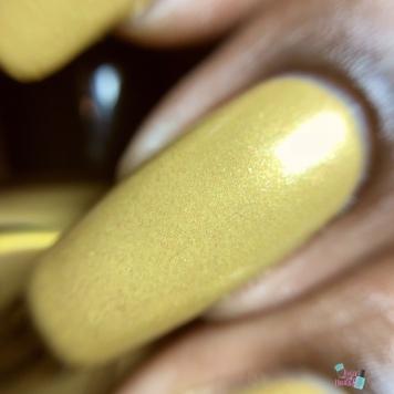 Gold Stamping Sauce - macro