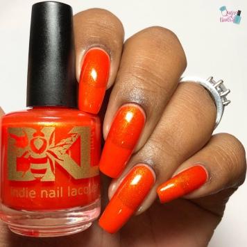 Monarch Butterfly Wing - w/ glossy tc