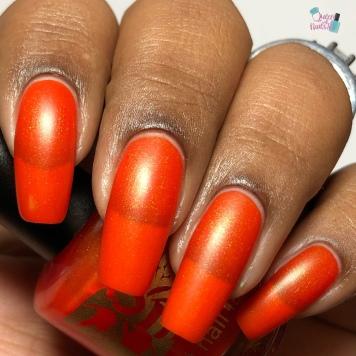 Monarch Butterfly Wing - w/ Hail Satin tc
