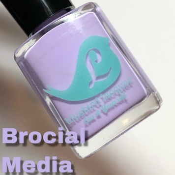Brocial Media